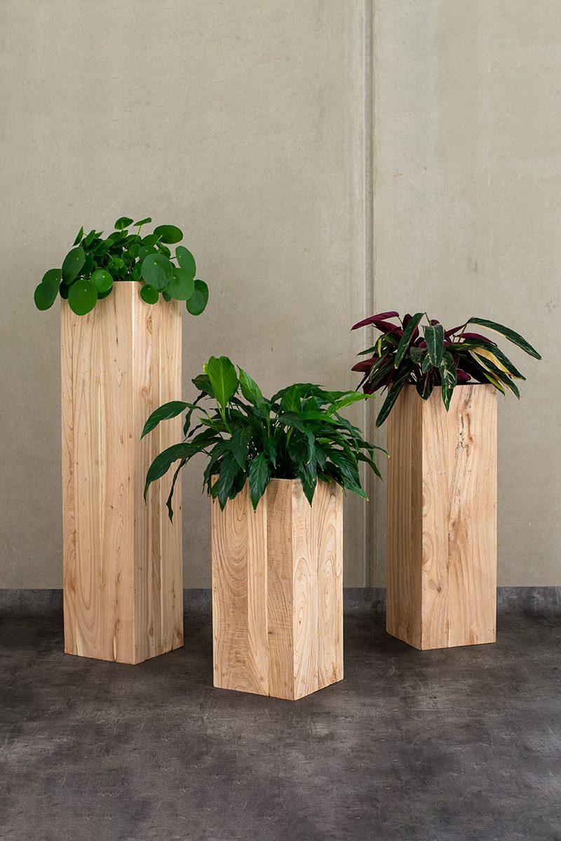 PlantyPlaces-153_web