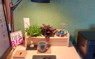 Dekolust – für deine Küche, dein Büro  und Irgendwo……